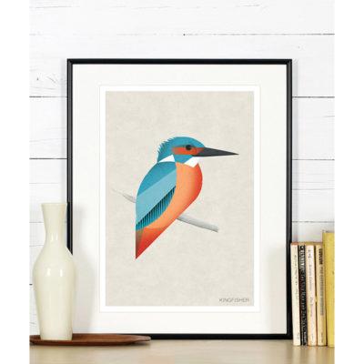 ptak-plakat-kingfisher-a